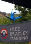 02 free brad and crane